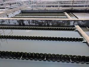 Wastewater mining