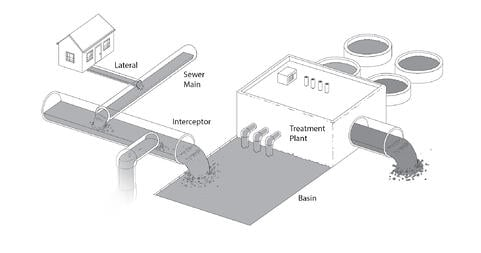 Sewer System Anatomy